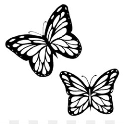 Butterfly Outline PNG Monarch Butterfly Outline CleanPNG / KissPNG