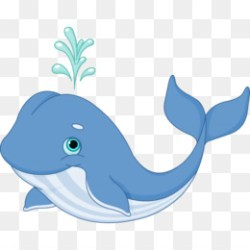 Whale PNG Blue Whale Cartoon Whale Cute Whale Whale Silhouette Baby Whale Whale Drawing Orca Whale Whale Art Vineyard Vines Whale Whale Baby Shower Whale Outline Whale Eating Whale Birthday