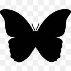 Butterfly Silhouette PNG flying butterfly silhouette black butterfly silhouette butterfly silhouette art simple butterfly silhouette easy butterfly silhouette CleanPNG / KissPNG