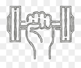 Exercise Icon PNG and Exercise Icon Transparent Clipart Free Download CleanPNG / KissPNG