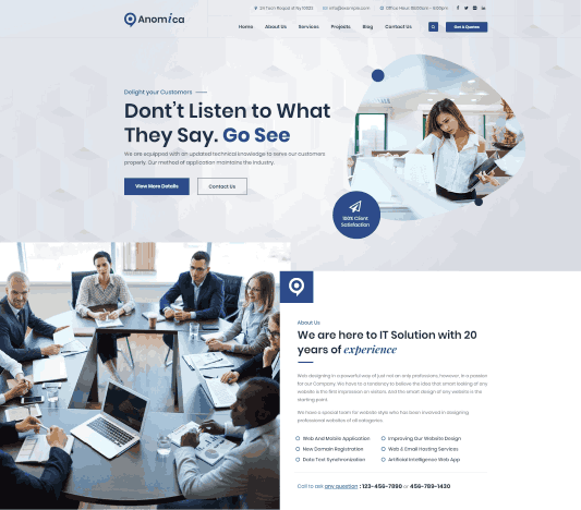 Anomica a Perfect Network Solutions Website WordPress Theme