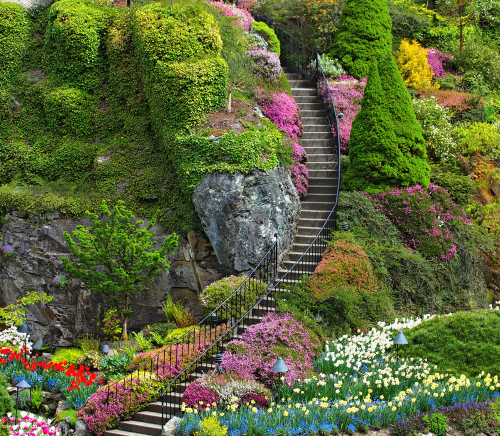 The Butchart Gardens Most Beautiful Garden