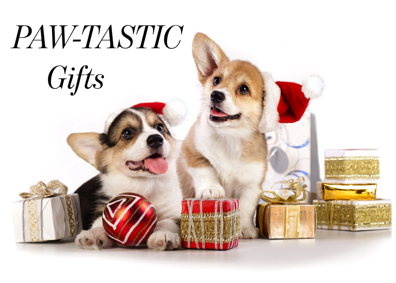 ICONIC LIFE Christmas gifts for pets
