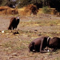 Vulture Stalking a Child