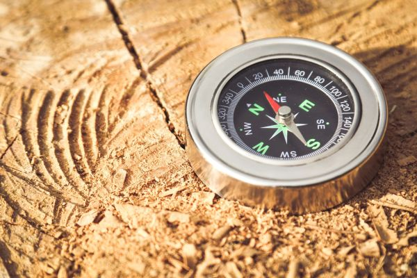 compass capabilities of market research