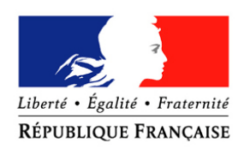 french consulate logo