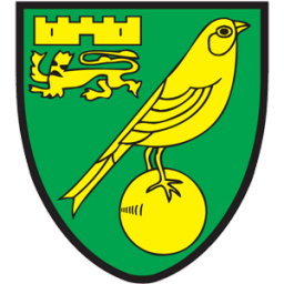 Image result for norwich logo png icon