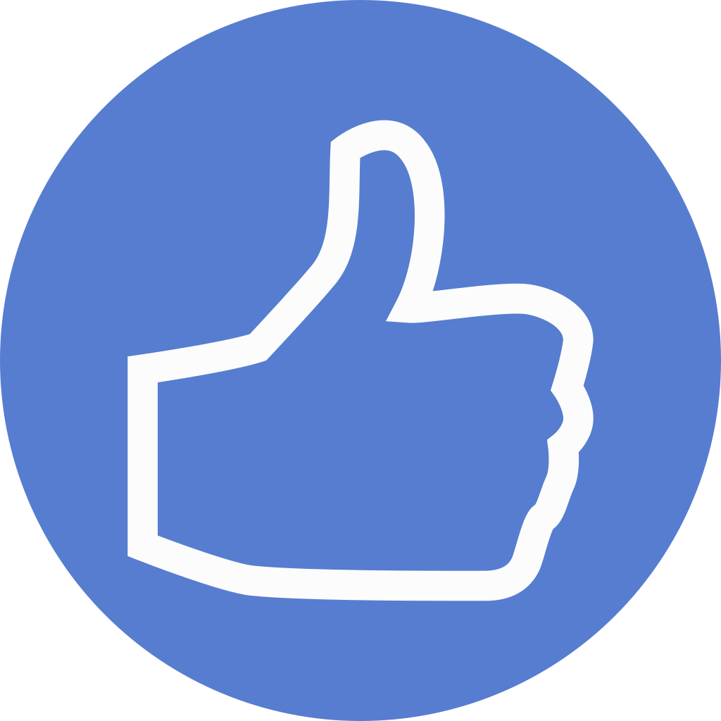 election thumbs up outline