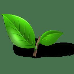 Tea plant leaf Icon   Tea Iconset   Toma4025