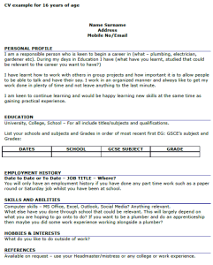 cv example for 16 year olds