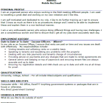 Income Officer CV Example