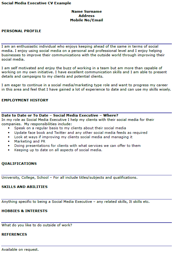 Social Media Executive CV Example  icoverorguk