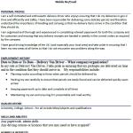 Delivery Van Driver CV Example