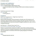 Domestic Assistant CV Example