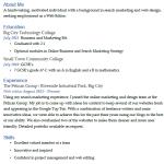 Web Editor CV Example