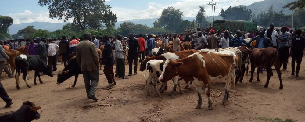 TEV-Uganda