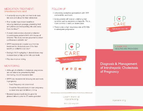 ICP Healthcare Provider Brochure Image
