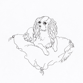 king charles spaniels colouring pages