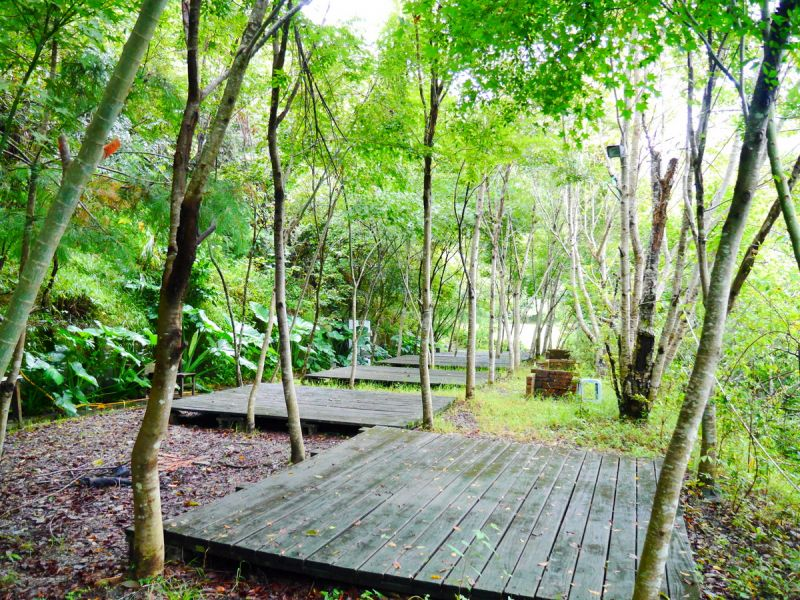 小巧寧靜的樹林區,有種秘密基地的放鬆氛圍。(何師父love露營提供)