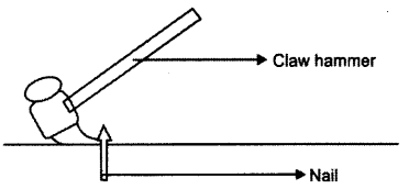 ICSE 2019 Physics Question Paper Solved for Class 10 - 1