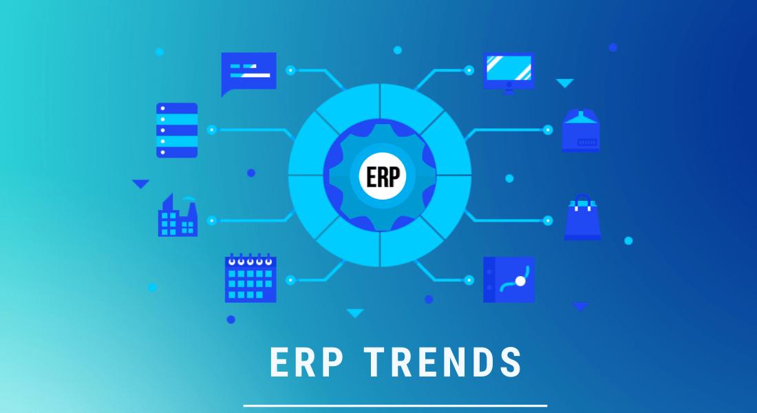 ERP-consultants