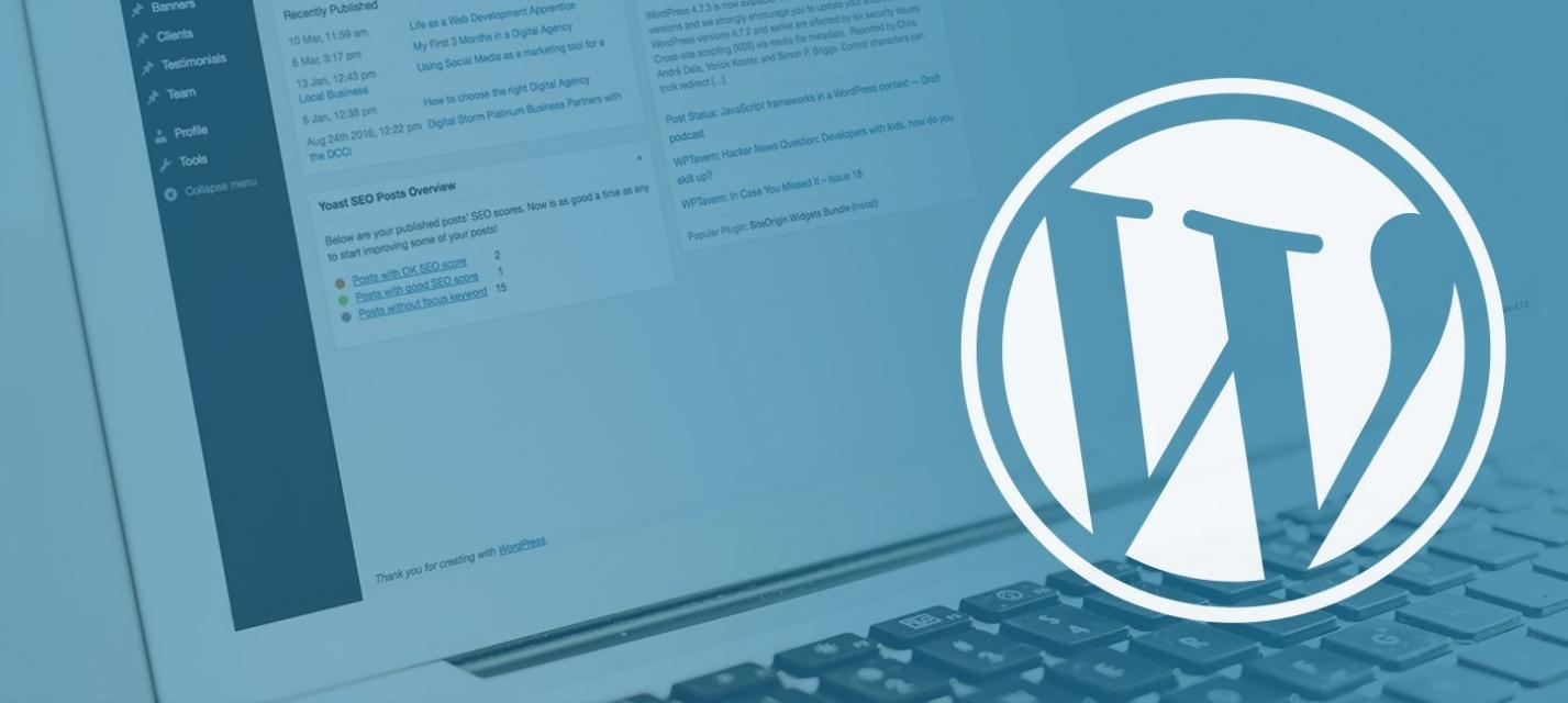 Mistakes To Avoid As A Beginner In WordPress