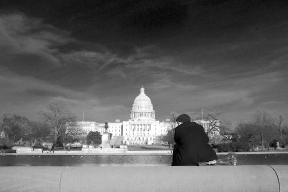 Capitol Roses (Washington, DC, 2014)