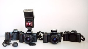 Autofocus Nikons for Your Consideration