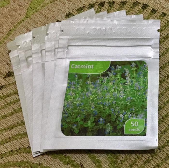 BEST SELLER Benih Bibit Seeds Herb CATMINT CAT MINT ORIGINAL
