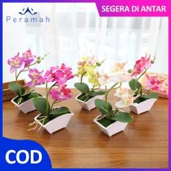 ã€COD】Peramah 5 Warna Pot Bunga Hiasan Pajangan Bunga Anggrek Hias Ruang Tamu Sudut Palsu Anggrek Dekorasi Rumah Artificial Flower
