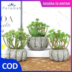 ã€COD】Peramah Pot Bunga Hiasan Ruang Sudut Tamu Rumah Bunga Hias Tanaman Succulent PE Mini Tamanan Dekorasi