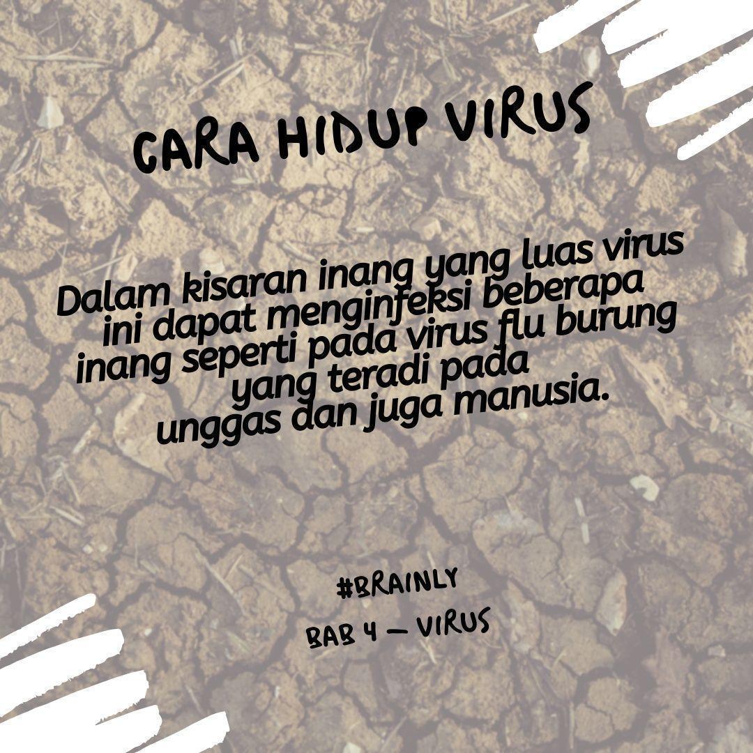karakteristik klasifikasi dan penyakit oleh virus#mohon bantuannya ...