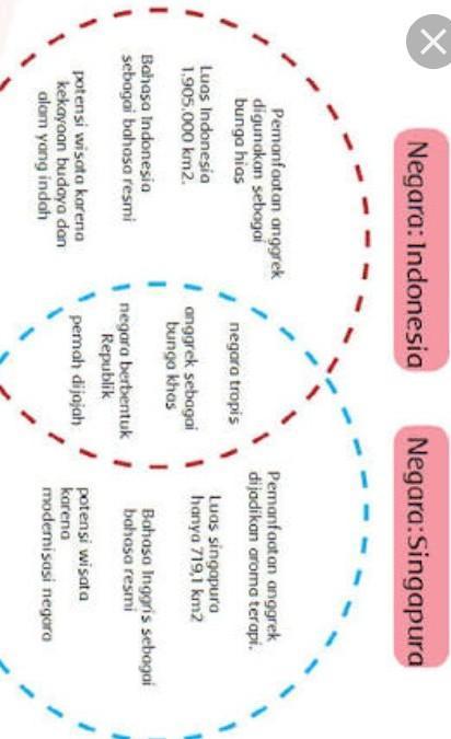 Bentang Alam Singapura : bentang, singapura, Dengan, Menggunakan, Diagram, Venn,, Tulislah, Kondisi, Geografis, Negara, Indonesia, Singapura, Brainly.co.id