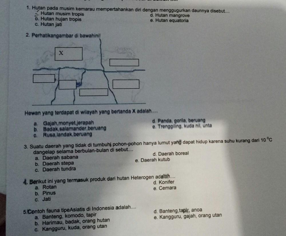 medium resolution of ada yg tau g jwbn dari nomer satu sampe 5 bantuin makasih