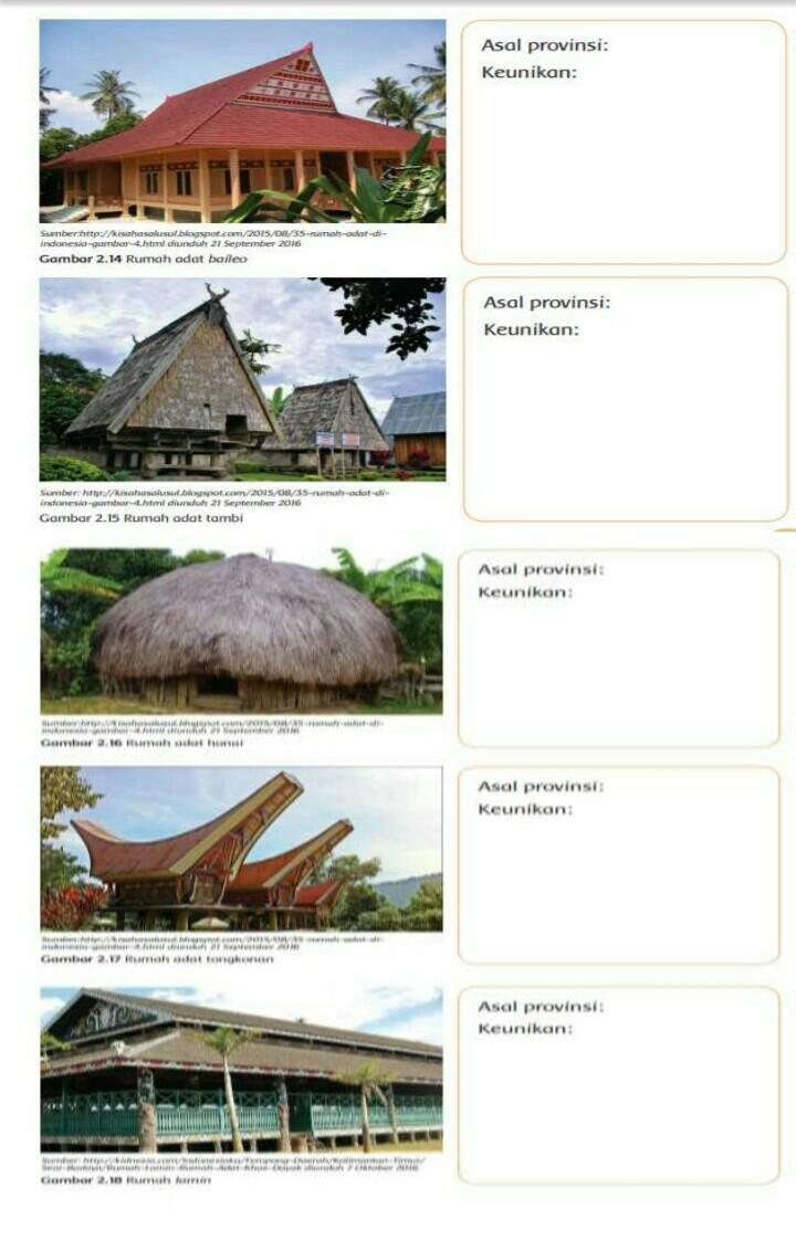 Keunikan Rumah Adat Baileo : keunikan, rumah, baileo, Tolong, Deadline, Tidak, Orang, Tuaku, Brainly.co.id