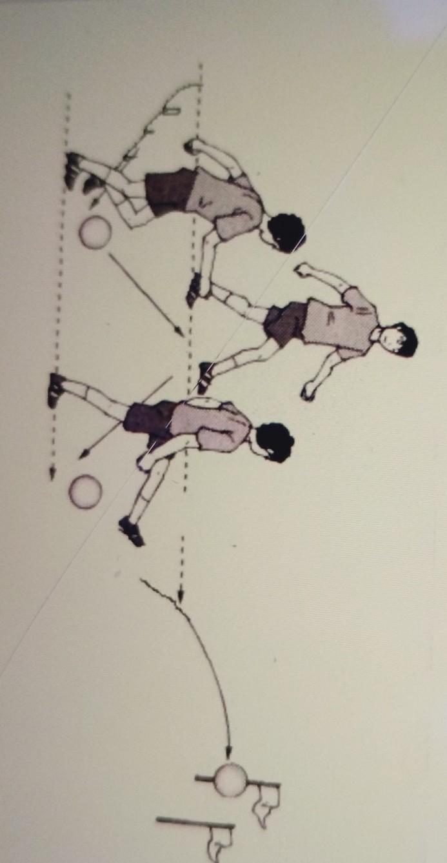 Variasi Dan Kombinasi Menendang Bola : variasi, kombinasi, menendang, Perhatikan, Gambar, Berikut, Merupakan, Variasi, Kombinasi, Gerak, Spesifik, Permainan, Sepak, Brainly.co.id