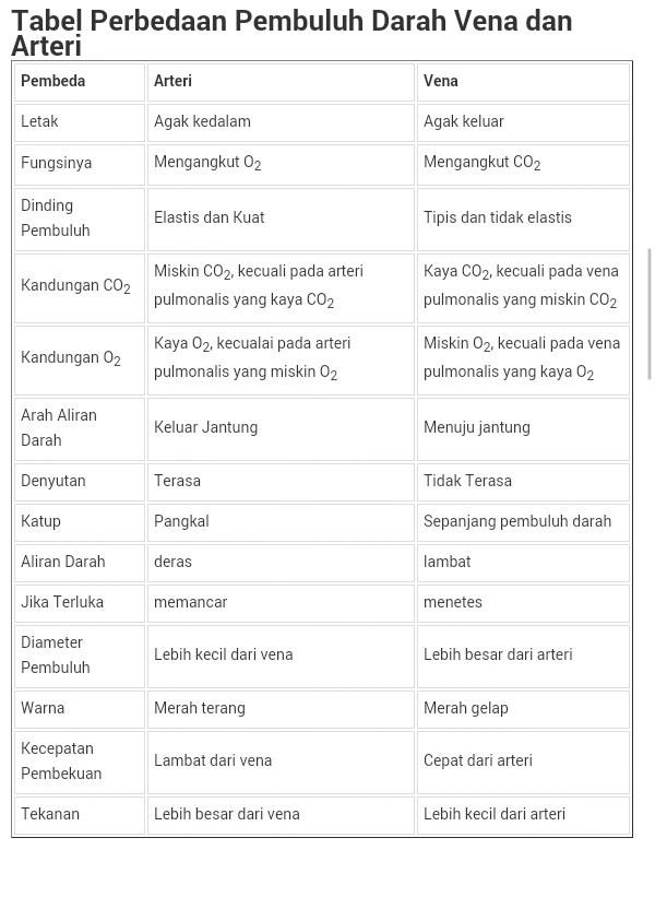 Perbedaan Pembuluh Darah Arteri Dan Vena : perbedaan, pembuluh, darah, arteri, Perbedaan, Pembuluh, Arteri, Dengan, Brainly.co.id