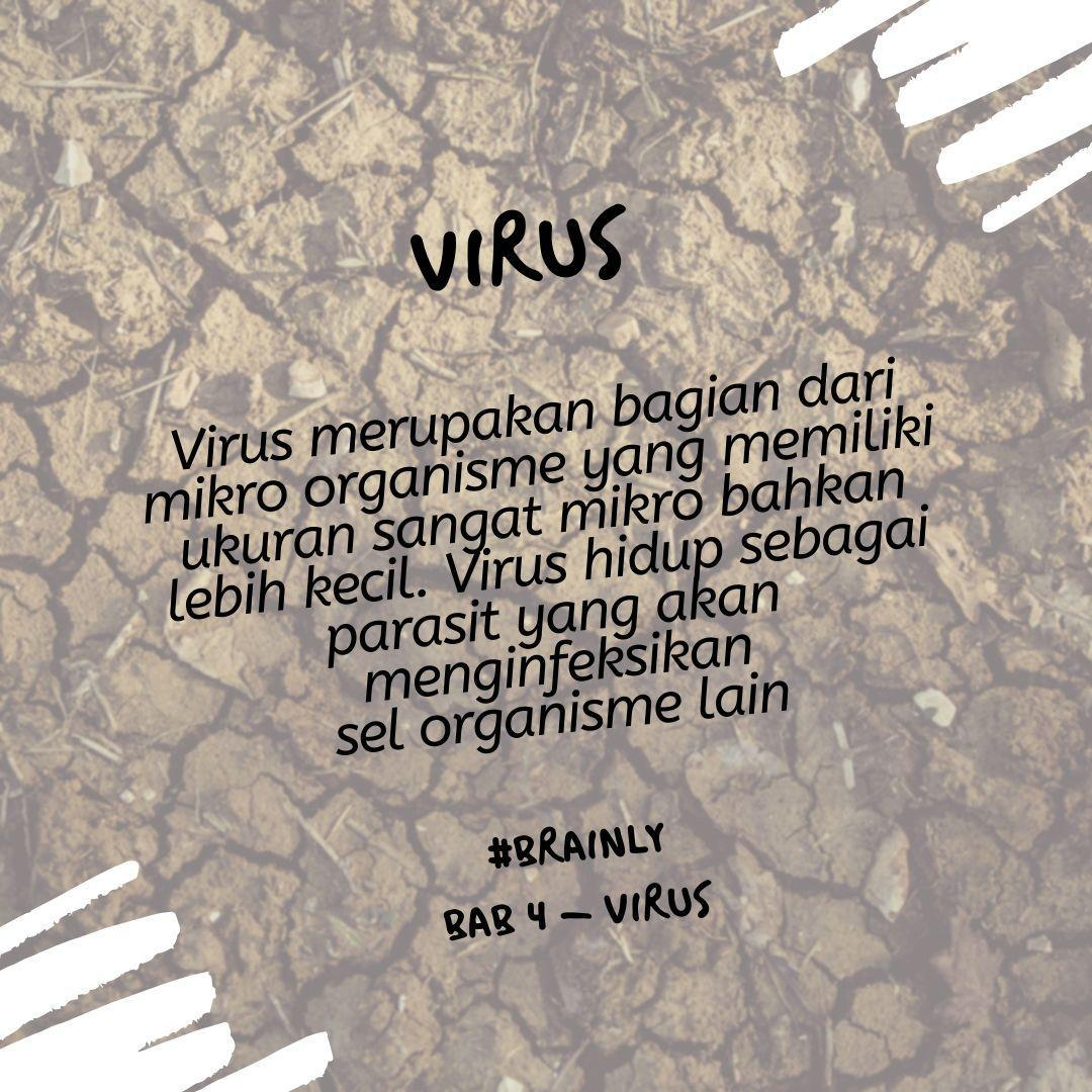 Virus memiliki beberapa jenis, secara umum memiliki karakteristik ...