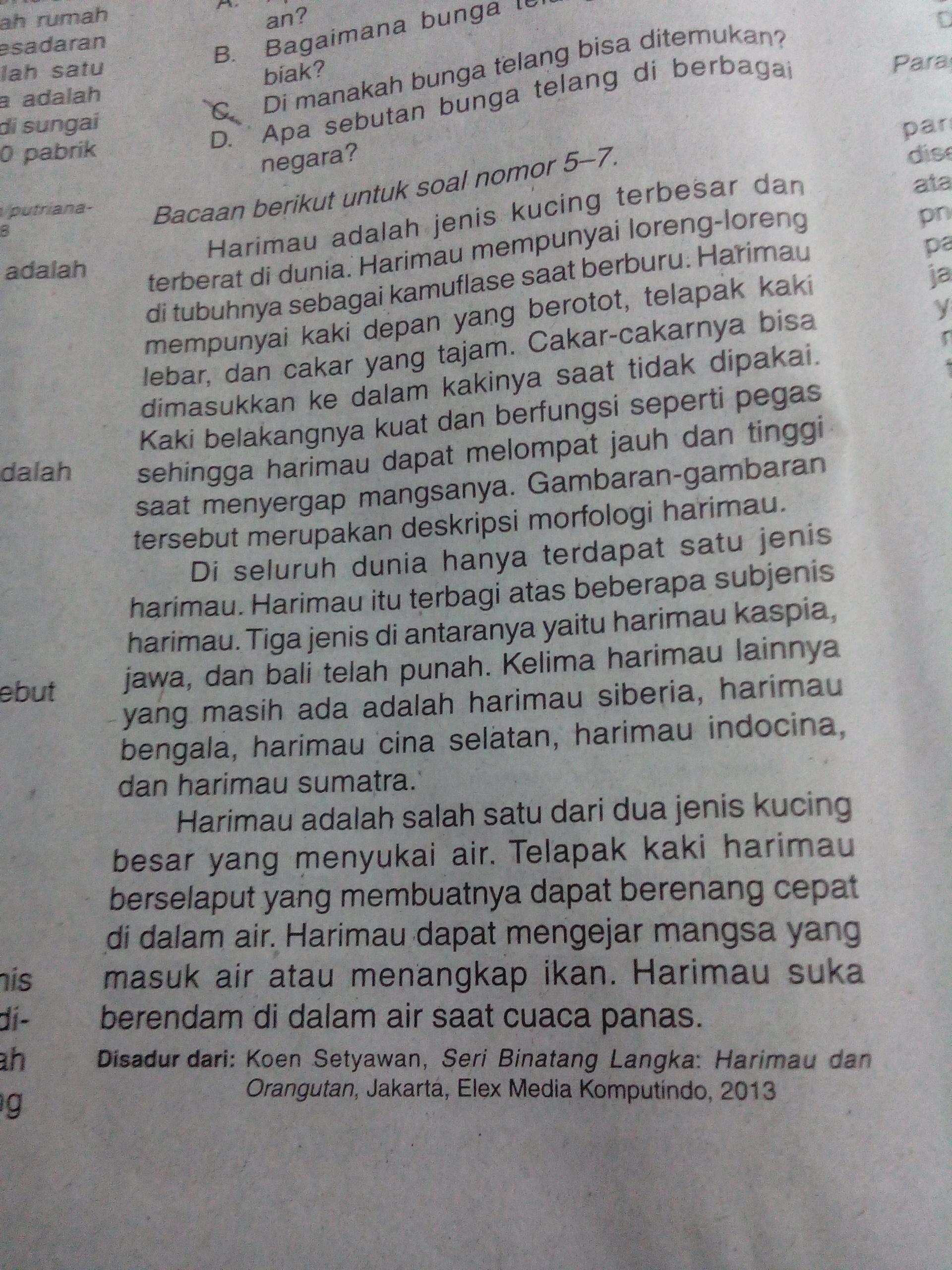 Ide Pokok Yaitu : pokok, yaitu, Pokok, Paragraf, Adalah...., Kesukaan, Harimau, Jenis², Selaput, Brainly.co.id