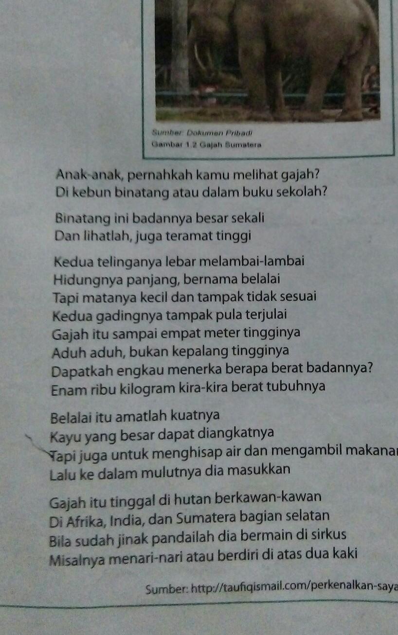 Cerita Pengalaman Bahasa Jawa : cerita, pengalaman, bahasa, Pengalaman, Pertama, Masuk, Sekolah, Dalam, Bahasa, Brainly.co.id