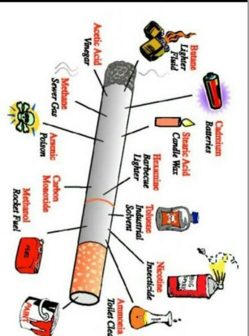Sebutkan Zat-zat : sebutkan, zat-zat, Tugas, BK*Gambar, &, Sebutkan, Terkandung, Dalam, Rokok., Tolong, Dijawab, Brainly.co.id