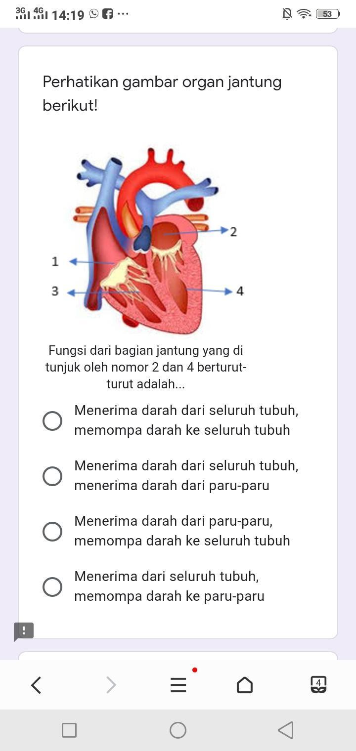 Gambar Bagian Jantung Dan Fungsinya : gambar, bagian, jantung, fungsinya, Perhatikan, Gambar, Organ, Jantung, Berikut!, Fungsi, Bagian, Tunjuk, Nomor, Brainly.co.id