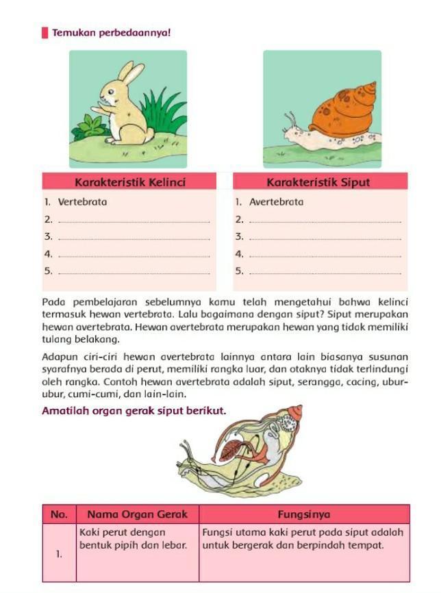Organ Gerak Ubur Ubur : organ, gerak, Tolongin, Dong...., Harus, Dikumpulin, Nih..., .·´¯`(>·<)´¯`·., Tolong!!, Brainly.co.id