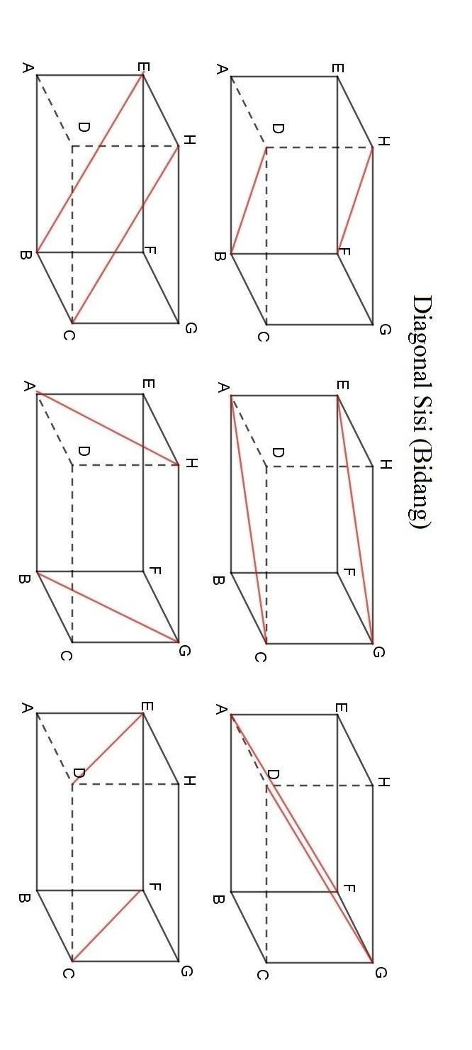 Diagonal Sisi Balok : diagonal, balok, Gambarlah, Balok, Dengan, Ukuran, Panjang, Lebar, Tinggi, Tempat, Brainly.co.id