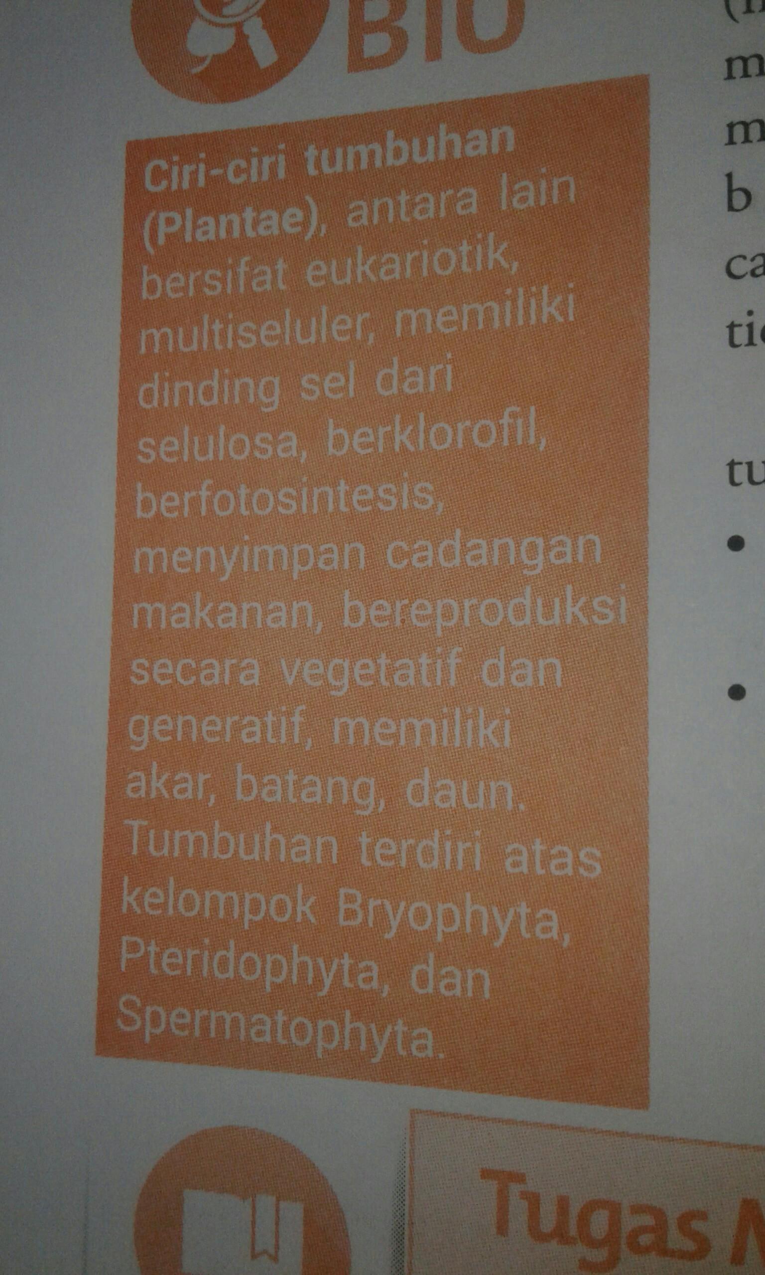 Ciri2 Monera : ciri2, monera, Sebutkan, Ciri2, Monera,, Fungi(jamur),, Plantae,, Protista, Brainly.co.id