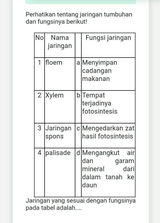 Fungsi Jaringan Spons : fungsi, jaringan, spons, 1-dB., 2-aC., 3-cD., 4-bTolong, Bantu, Jawab, (・∀・)Jngn, Ngasal, Brainly.co.id