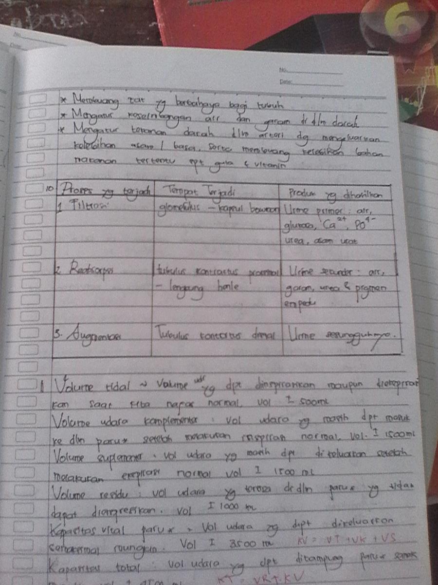 Tabel Pembentukan Urine : tabel, pembentukan, urine, Jelaskan, Proses, Terbentuknya, Urine, Jawaban, Bersama