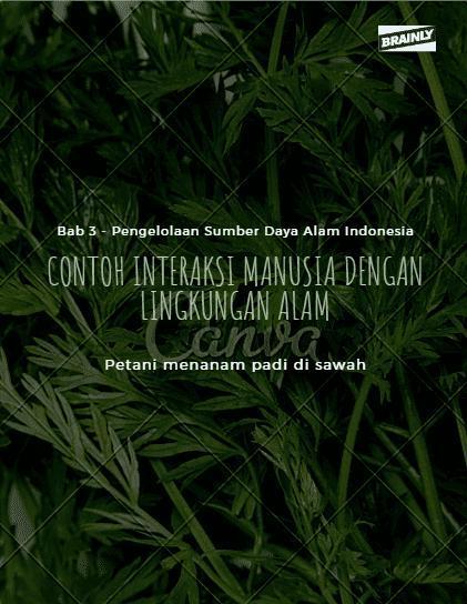 PDF Interaksi Manusia Dengan Lingkungan!!!