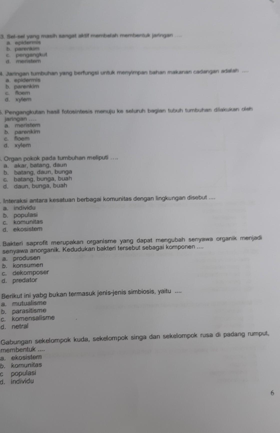 PDF Bab Ii Asosiasi Komunitas Lamun Dengan Makroalga