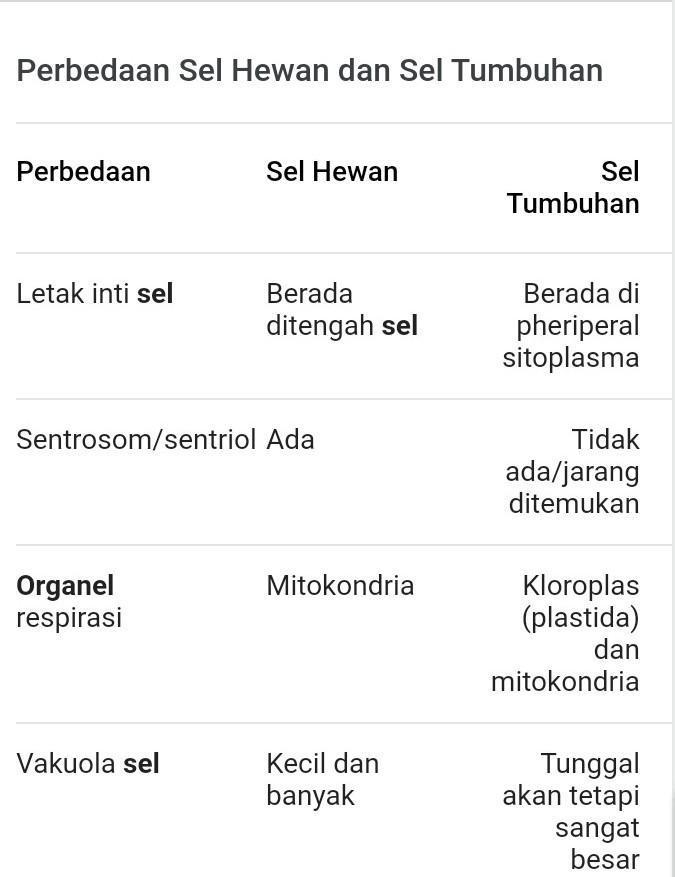 Jelaskan Perbedaan Sel Hewan Dan Sel Tumbuhan : jelaskan, perbedaan, hewan, tumbuhan, Jelaskan, Perbedaan, Hewan, Tumbuhan, Serta, Fungsi, Organel, Masing, Brainly.co.id